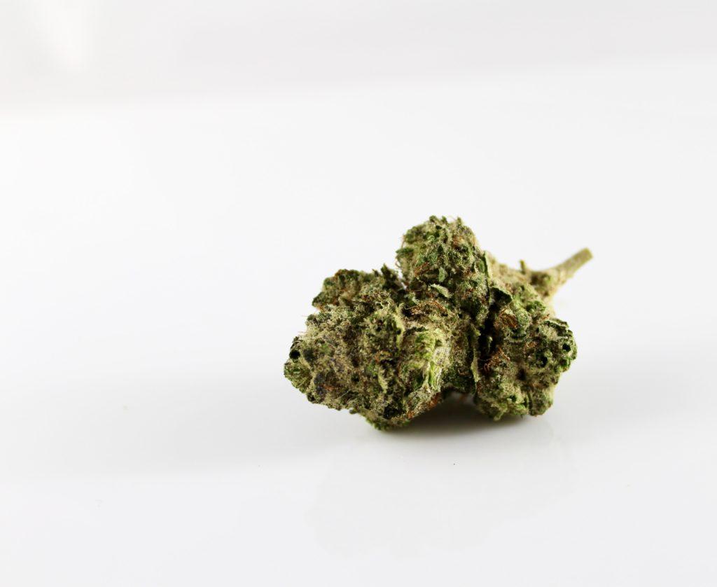 Christina winter cannabis more act culture & cannabis